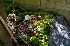 CompostHeap01-1