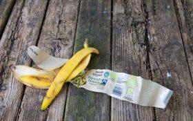 banana peel and wrapper