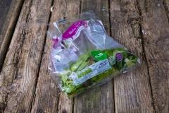 CompostHeap01-1-10